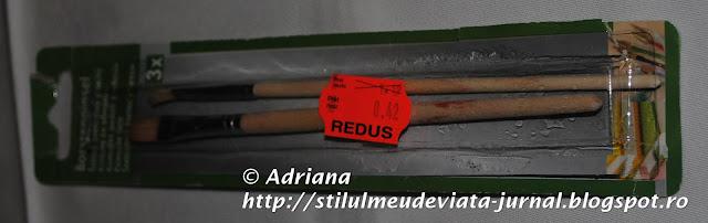 set pensule, reducere rechizite Kaufland