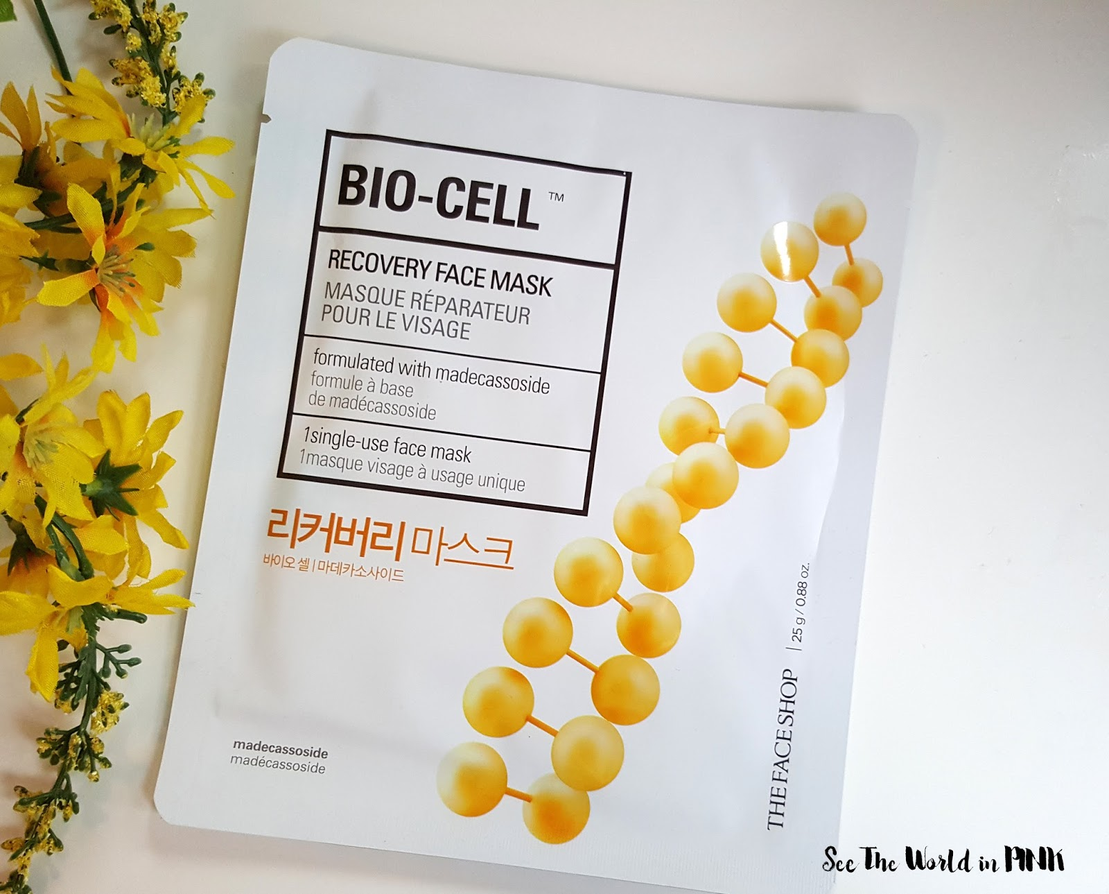Mask Wednesday - The Face Shop Bio-Cell Recovery Face Mask