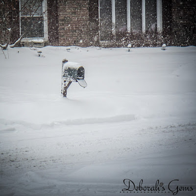 Winter 3 - photo by Deborah Frings - Deborah's Gems