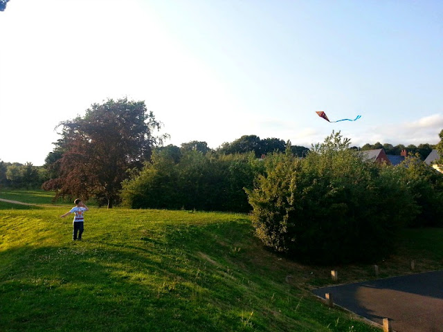 Boy flying a small kite on a grassy bank.