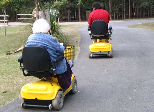 Electric Scooter for Seniors