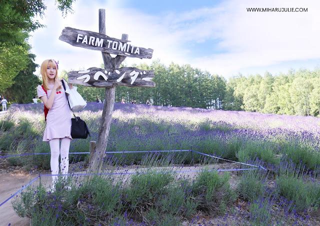 farm tomita hokkaido travel