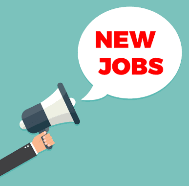Employment Notice for various Job Posts in Kidzee School with smart salary