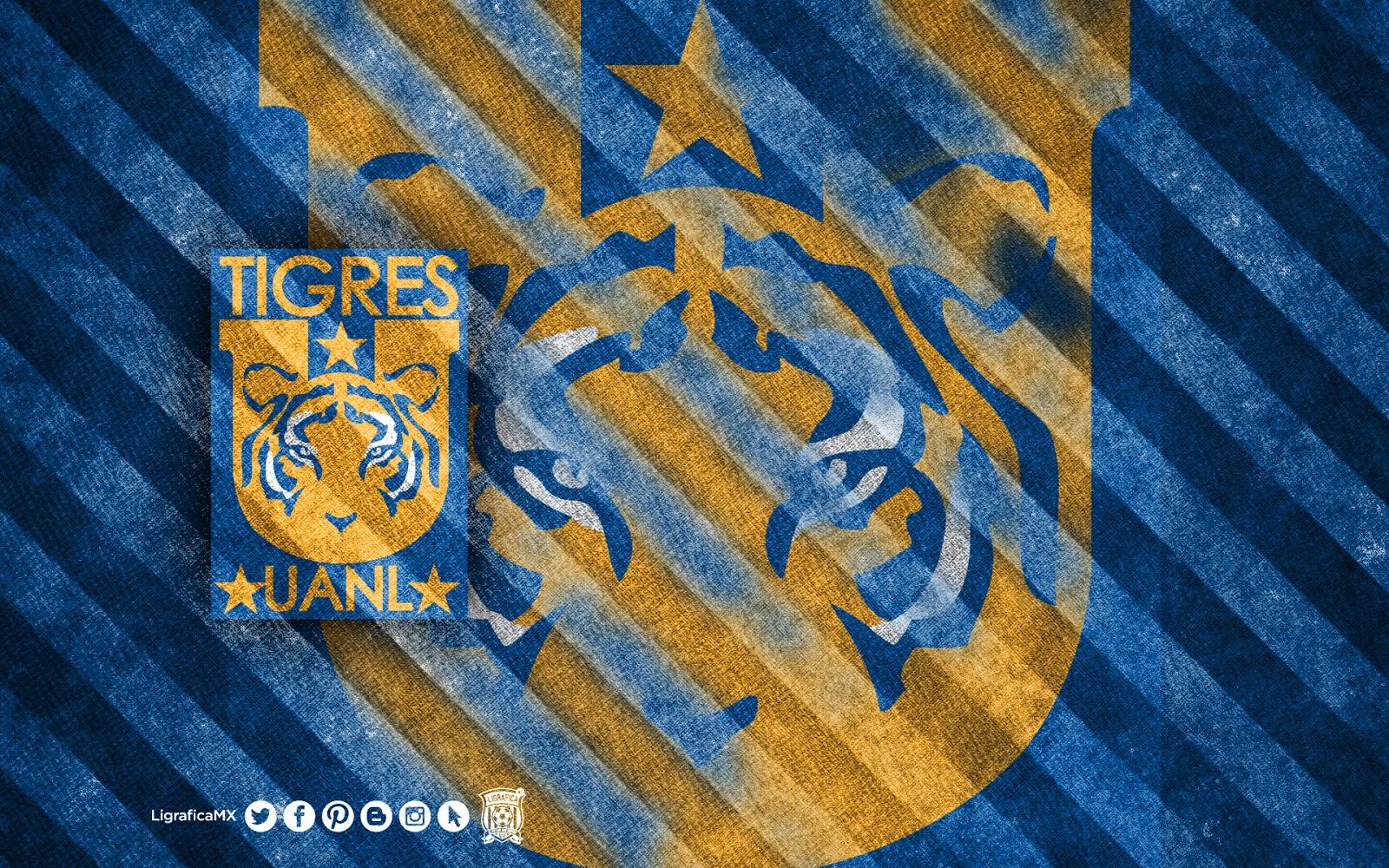 Chivas Wallpaper Hd Ligrafica Mx Liga Bancomer Mx 060314ctg 1