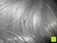 Haare: Uniwigs Star Perücke, Kunsthaar, Lace-Front, sanfte Wellen, lang, Grau