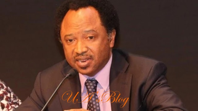 BREAKING: APC Suspends Senator Shehu Sani For Disrespectful Attitudes, Vicious Media Attacks Against President Buhari, APC Party