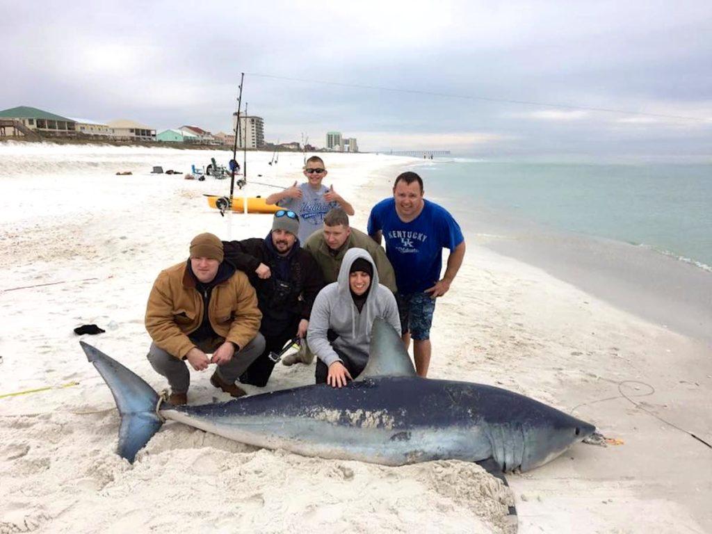 International fishing news florida caught a 10 foot mako for Shark fishing from shore