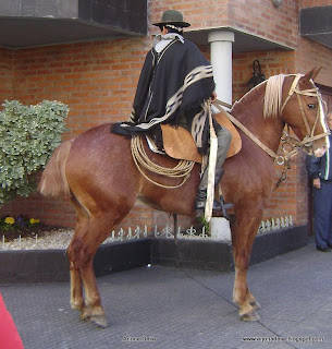 25 de mayo+desfile+caballos