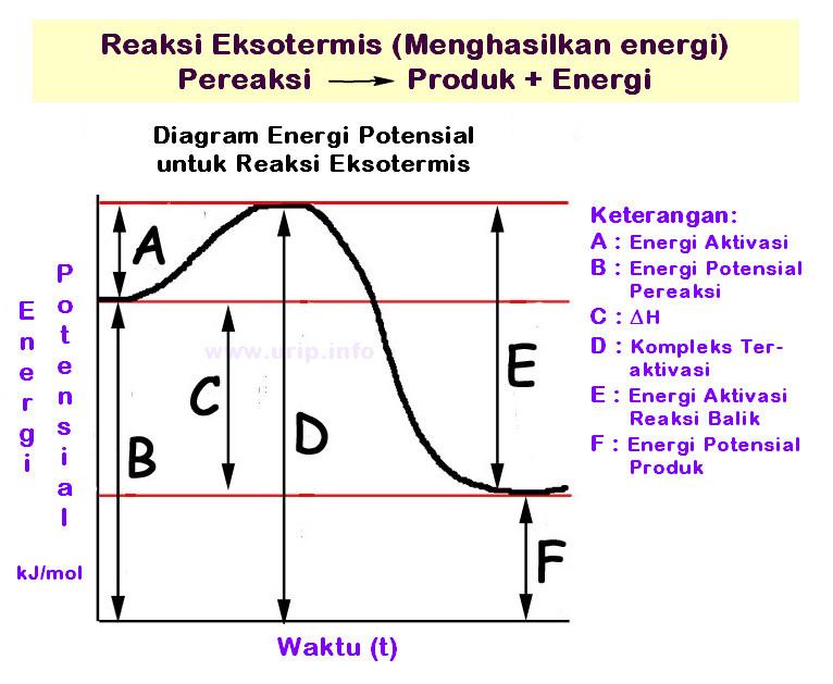 Pembahasan soal tentang profil diagram energi urip dot info pada tulisan ini akan sedikit diulas tentang bagaimana membaca diagram diagram yang biasa digunakan untuk pokok bahasan termokimia dan laju reaksi dan juga ccuart Images