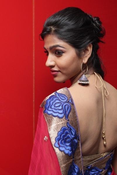 Backless Saree Blouse
