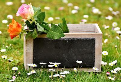 Rosas para ceremonia simbólica