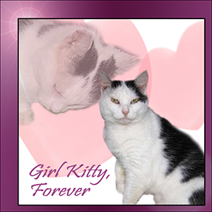 Farewell Girl Kitty