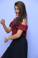Pavani Gangireddy in Cute Black Skirt Maroon Top at 9 Movie Teaser Launch 5th May 2017  Exclusive 086.JPG
