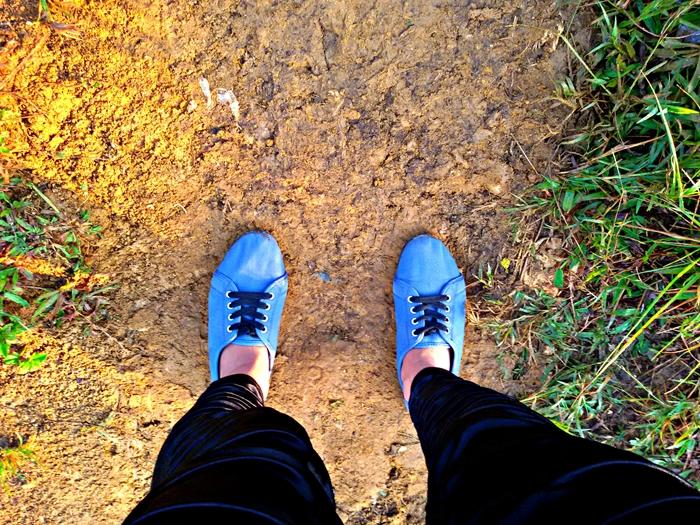 *Exhibit F - My Restless Feet