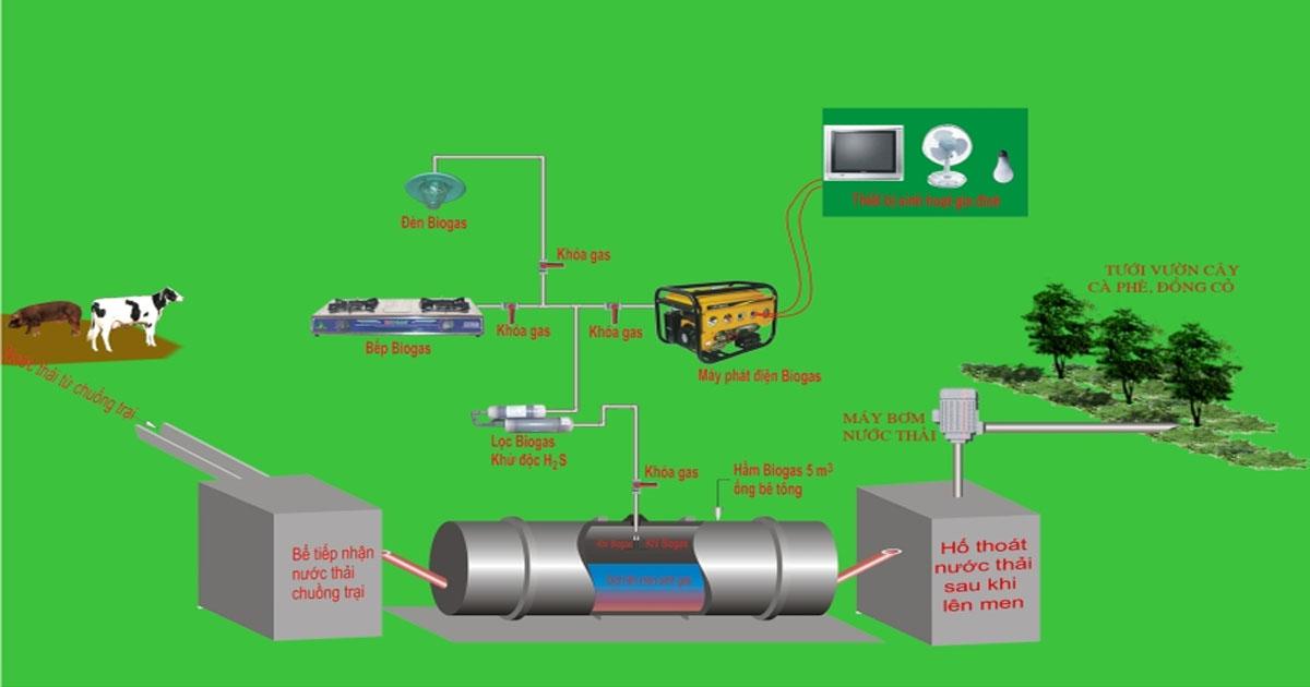 Quy hoạch chăn nuôi,cách xử lý chất thải trong chăn nuôi