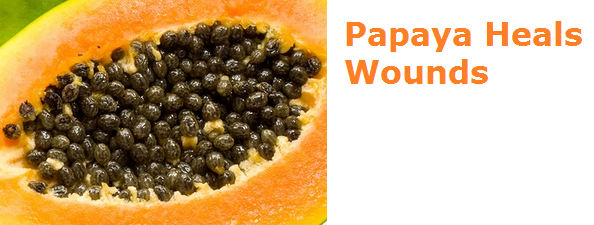 Health Benefits of Papaya - Paw paw Heals Wounds new