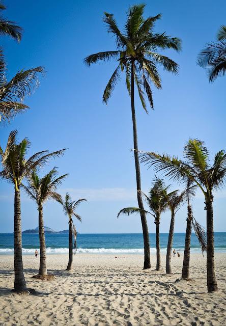 praia, ipanema, arvores, mar, sol, verão,