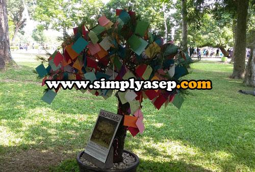 POHON KEHIDUPAN : Silahkan menuliskan pesan dan harapannya bagi kemajuan bangsa Indonesia bisa dipasang di pohon ini Foto Asep Haryono