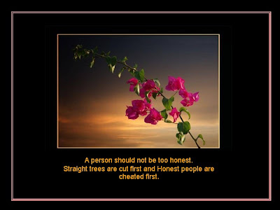 Beautiful Quotes For Life With Beautiful Flowers This Is Quite Good