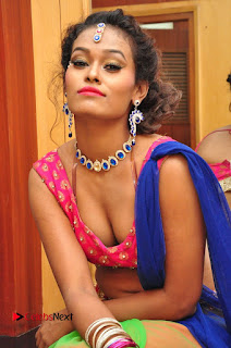Telugu Dancer Nisha  Pictures at Babu Bangaram Audio Launch  0100.JPG
