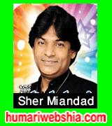 http://www.humariwebshia.com/p/sher-miandad-qasida.html