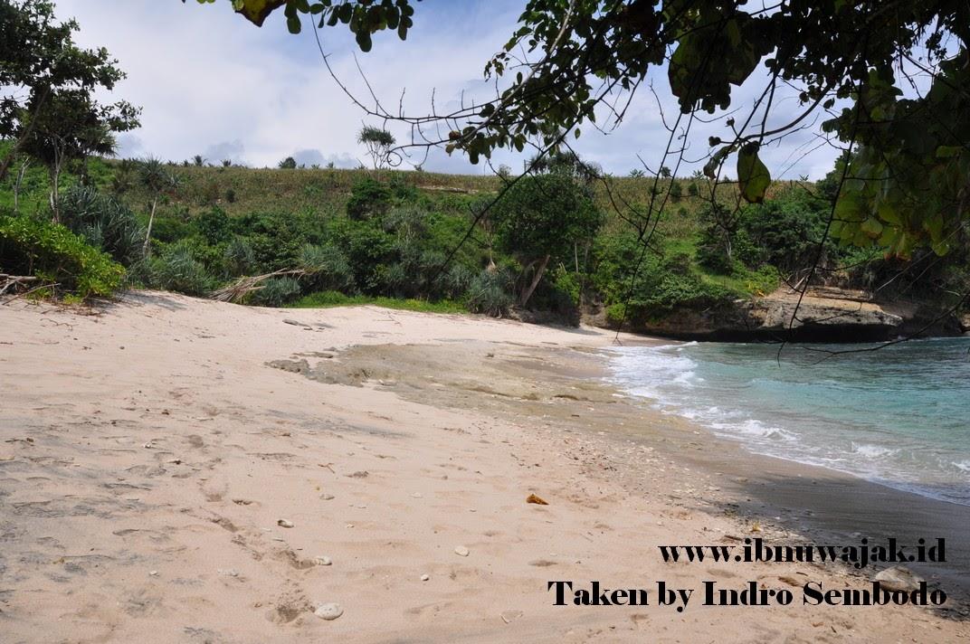 Pantai Wedi Putih Tulungagung, Deburan Ombak Tenang ...