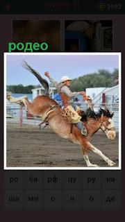 всадник укрощает лошадь, родео в загоне