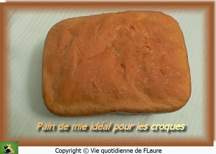 Vie quotidienne de FLaure: Pain de mie idéal pour les croques