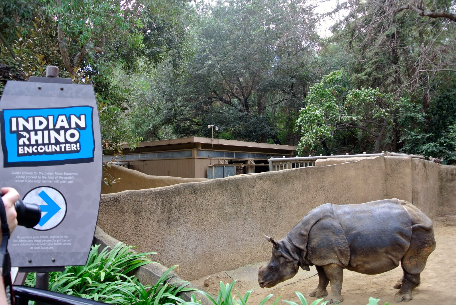 love, ashley: Snapshots From The Los Angeles Zoo