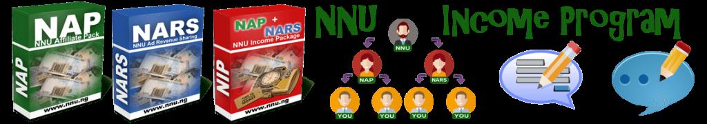 无法访问NNU.ng