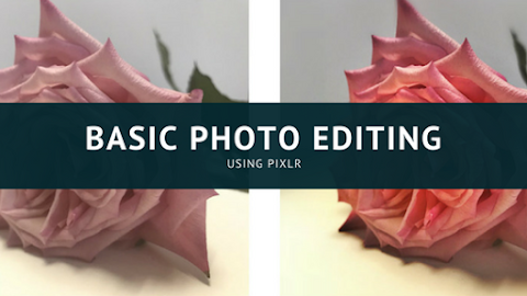 Basic Photo Editing Tips Using Pixlr