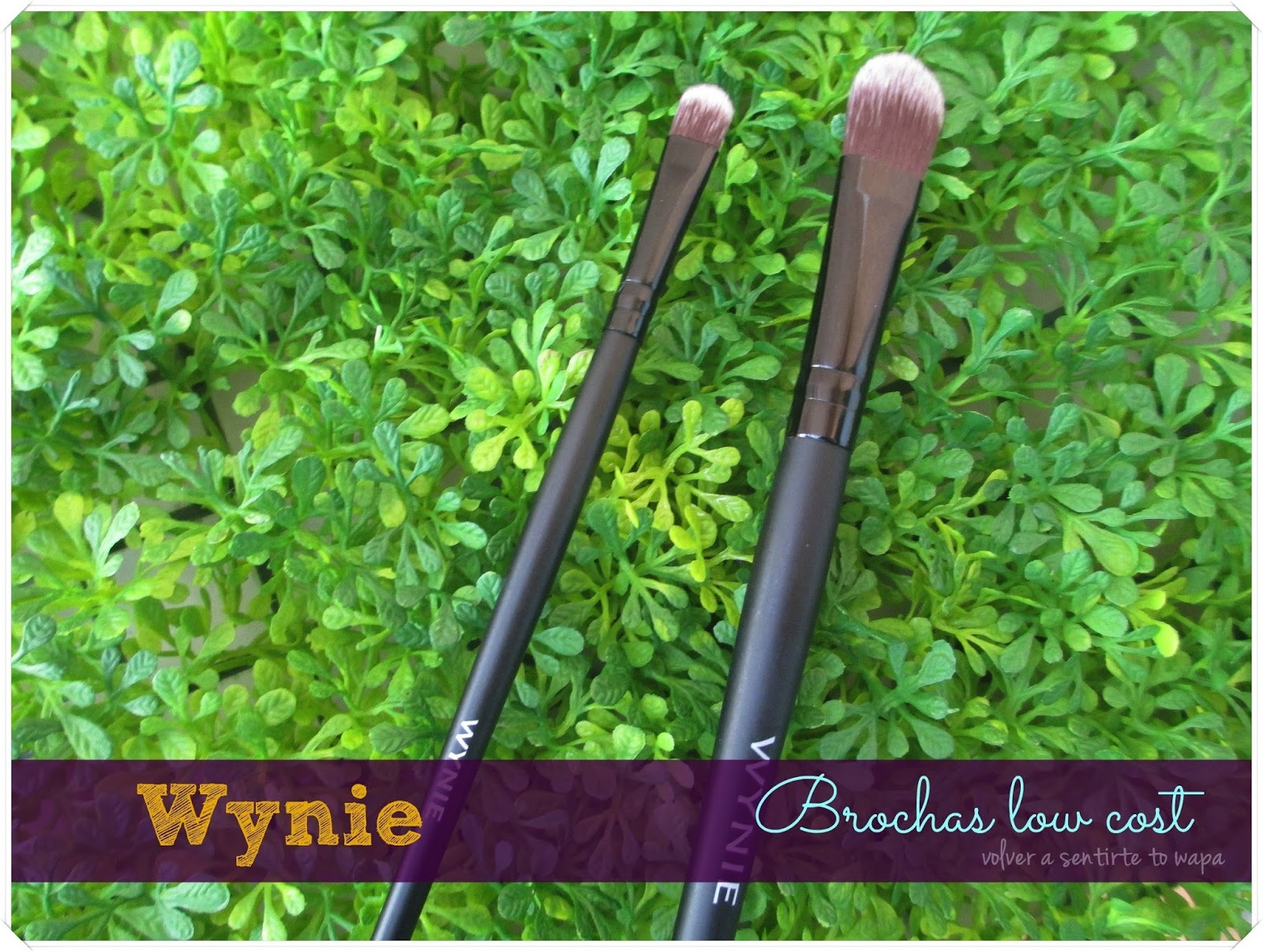 Brochas low cost - Wynie {review}