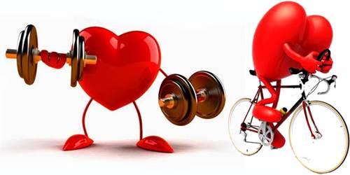 Es muy necesario conocer cómo combinar el trabajo de pesas y el tiempo de cardio