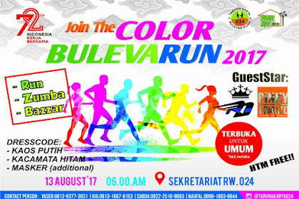 Color Bulevar  Run 2017