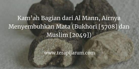 Kam'ah-Bagian-dari-Al-Mann,-Airnya-Menyembuhkan-Mata-(Bukhori-[5708]-dan-Muslim-[2049])