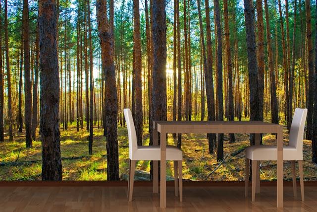 coola tapeter skog tapet trädstammar