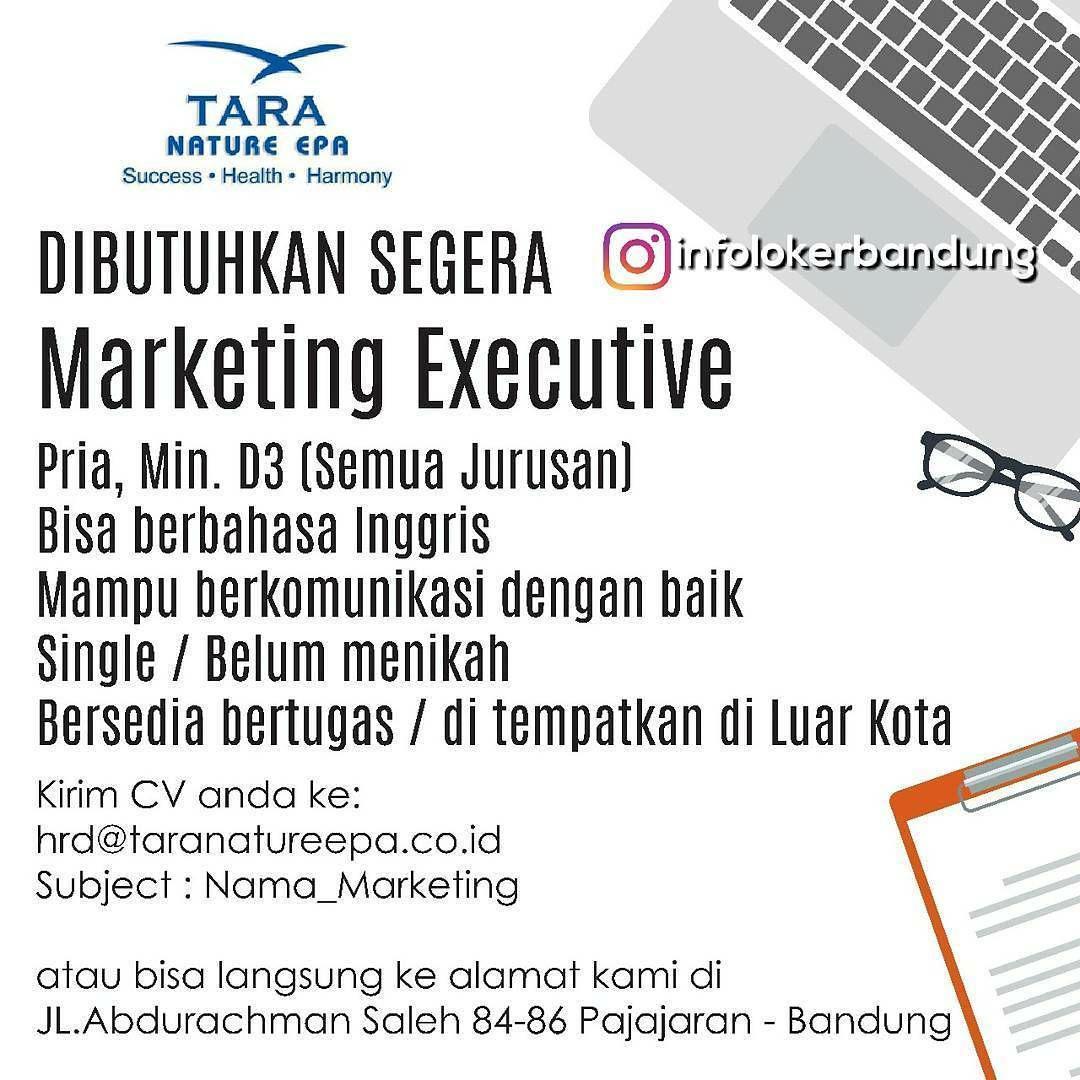 Lowongan Kerja PT. Tara Prima Megah September 2017