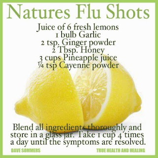How To Remain Good During The Influenza Season.  Hint: It Is To A Greater Extent Than Than Merely Taking The Influenza Vaccine!