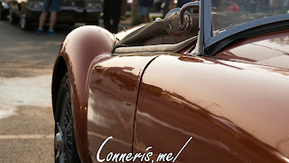 Copper MG MGA rear fender hips