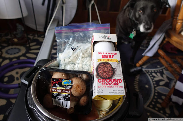 photo of a dog looking at an Instant Pot filled with the ingredients for bacon blue cheese mushroom meatloaf with sweet potatoes