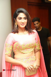 Actress Deepthi Pictures at Jaguar Movie Audio Launch  0090.JPG