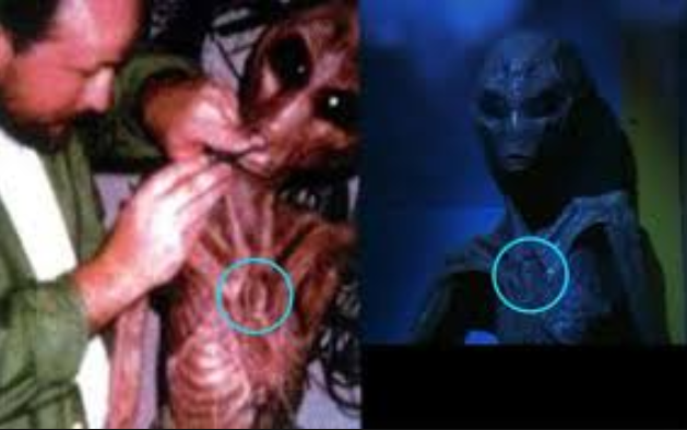 Image Result For Alien Government Movie