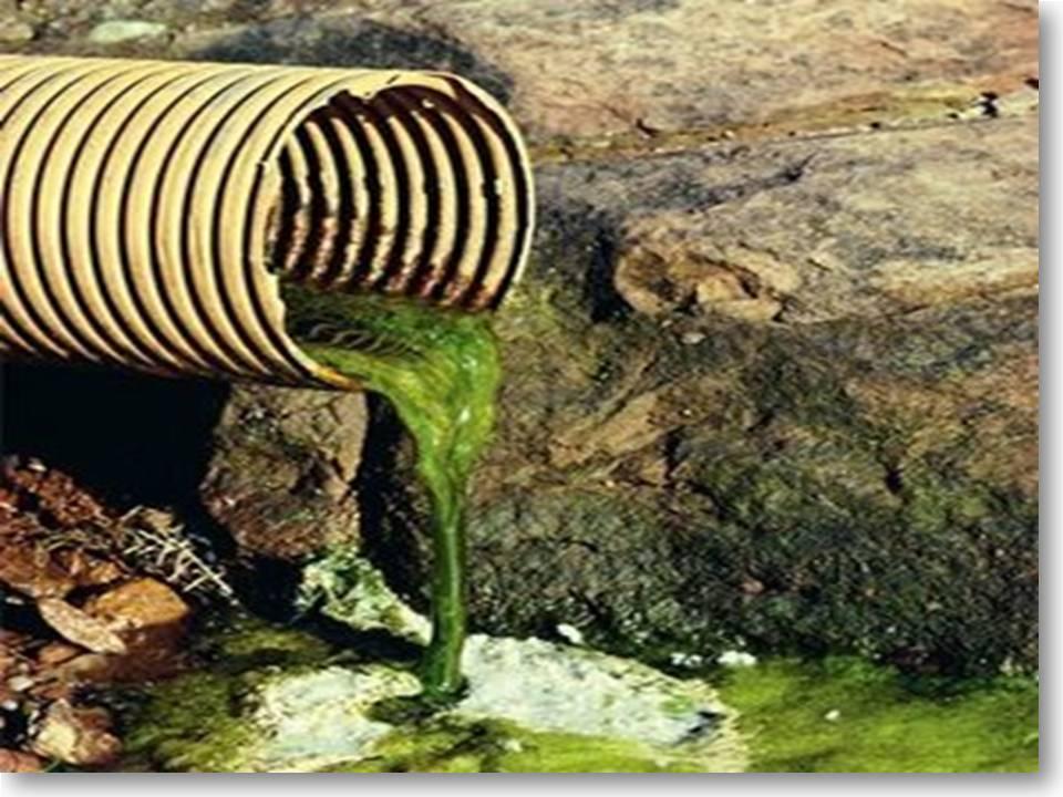 Unduh 81 Koleksi Background Pencemaran Air Gratis