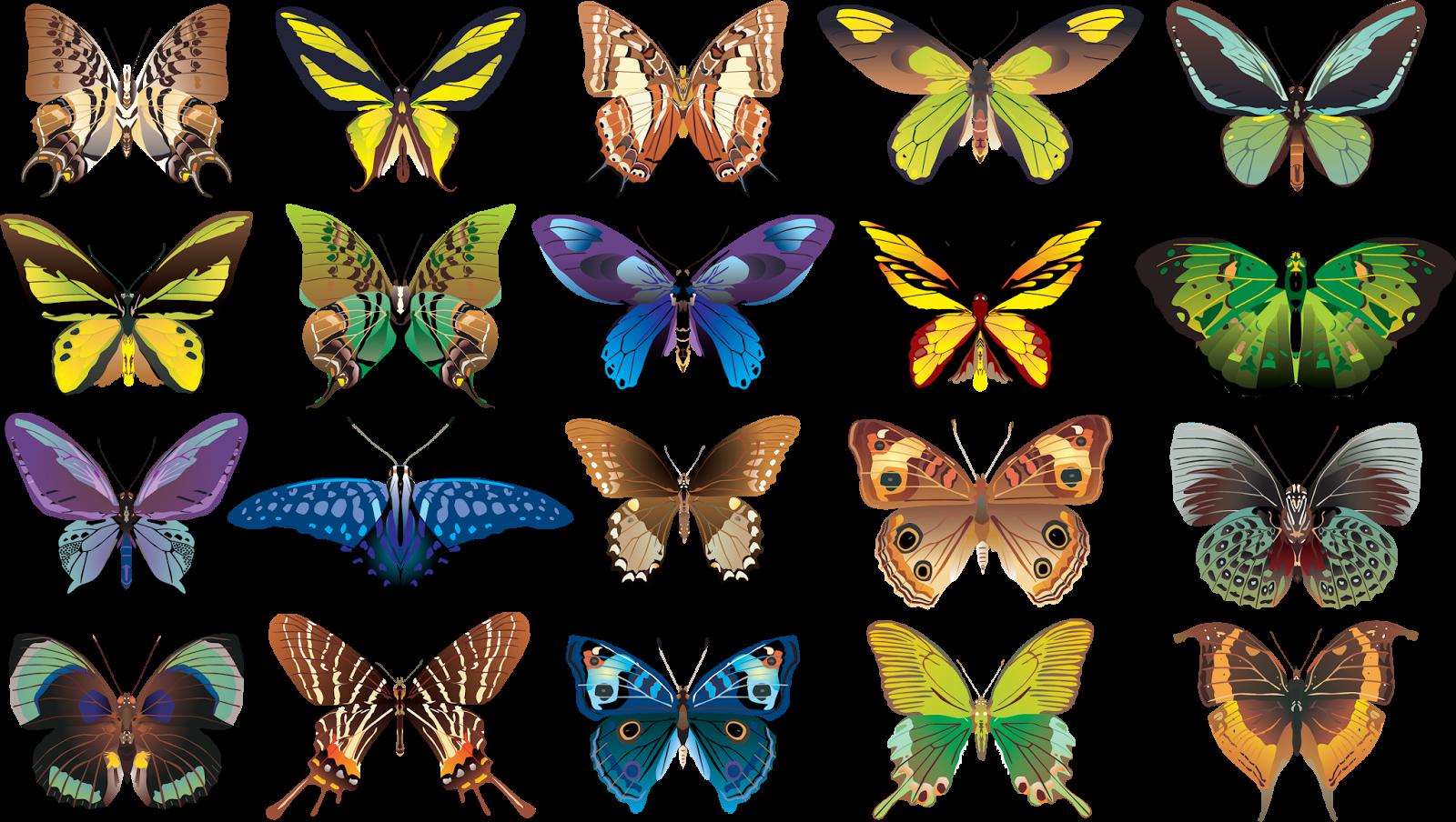 12 карточек в коллекции осевая симметрия » пользователя Дарья