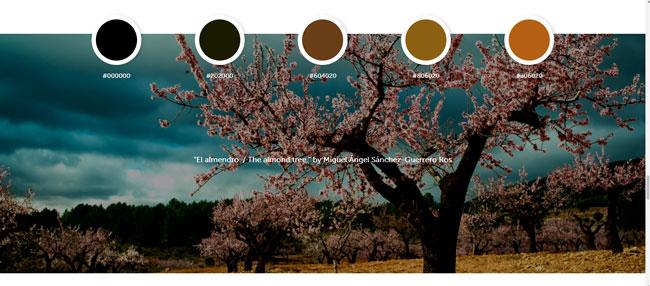 inspiracion_en_color