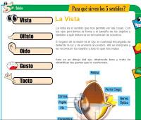 http://www.banrepcultural.org/blaavirtual/ninos/web5sentidos/tema1a.htm