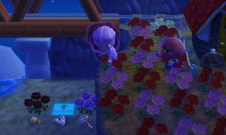 Animal Crossing New Leaf Remove Shoes