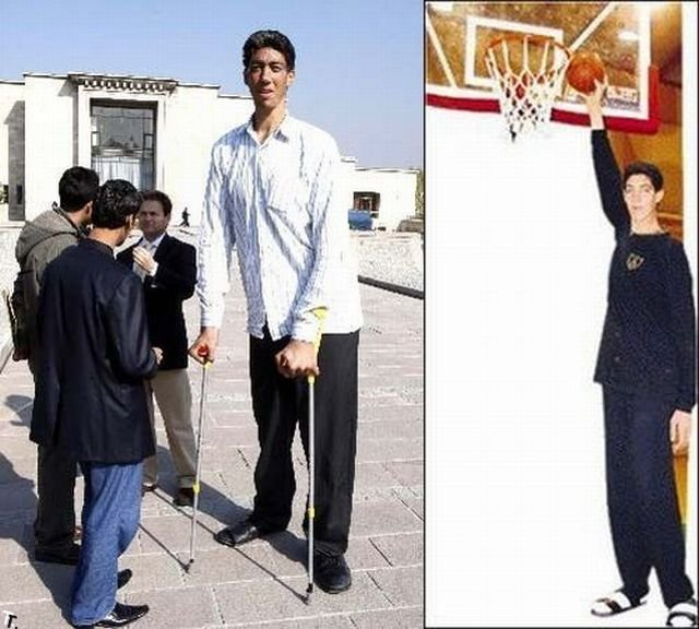 5bbf3c97504e Sultan Kösen is a Turkish farmer who holds the Guinness World Record for  tallest living male at 2.51 m (8 ft 3 in).His growth resulted from a tumour  ...