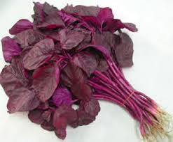 merupakan salah satu jenis sayuran yang banyak di konsumsi oleh masyarakat Manfaat Utama Mengkonsumsi Sayur Bayam Ungu untuk Kesehatan