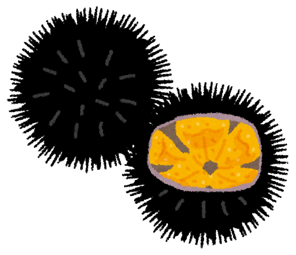 年賀状 年賀状の画像 : ウニのイラスト | 無料イラスト ...